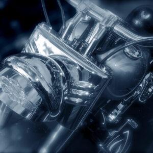 EVOCATION BRANDO (Harley Davidson)
